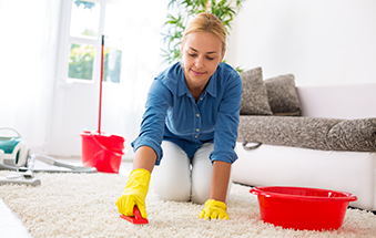 Carpet and sofa cleaning is now a lot easier!